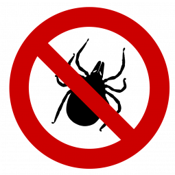 Tipps zum Schutz vor Zecken